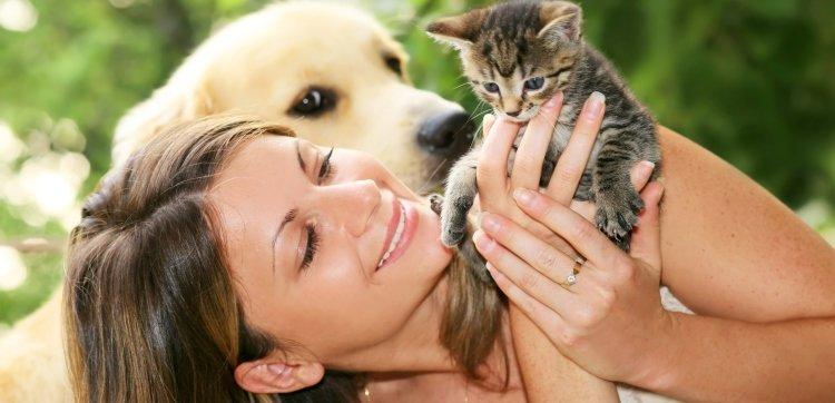 Как завести домашнее животное?